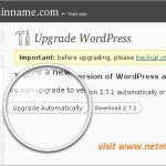 Safety measures to follow before you upgrade your WordPress