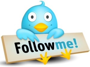 How to add Twitter follow me button on your WordPress Blog
