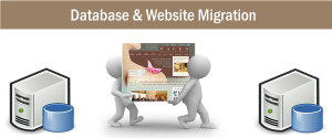 Website Migration Guide to avoid Downtime or Data loss