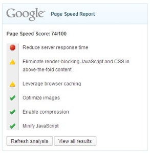 Google Page Speed report widget