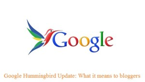 Google Hummingbird Update: What it means to bloggers