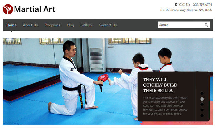 MartialArt WordPress Theme
