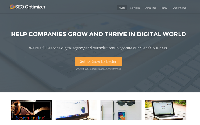 SEO Optimizer WordPress Theme